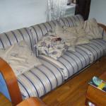 Реставрация мягкой мебели - Липки в МО
