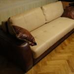 Арбат - перетяжка диванов